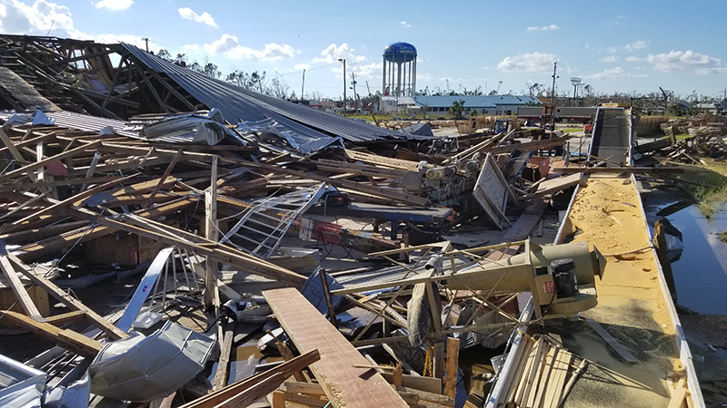 hurricane michael devastation panama city plant