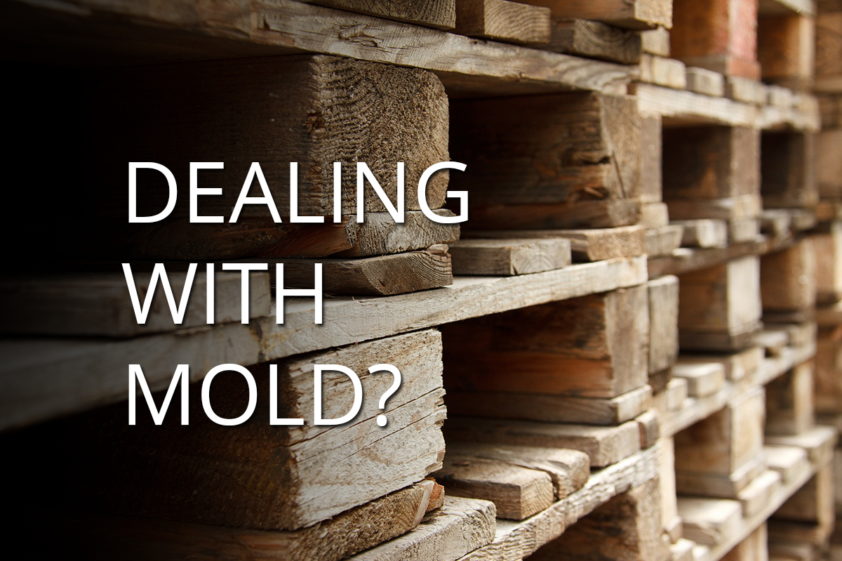 Pallet Mold: Discover How to Prevent, Inhibit and Remediate Mold on Wood Pallets