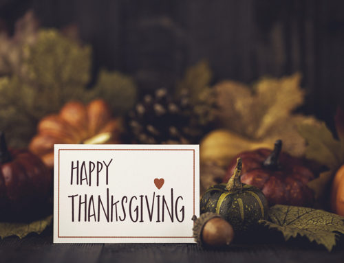 We Are Really Thankful For 4 Specific Things This Year